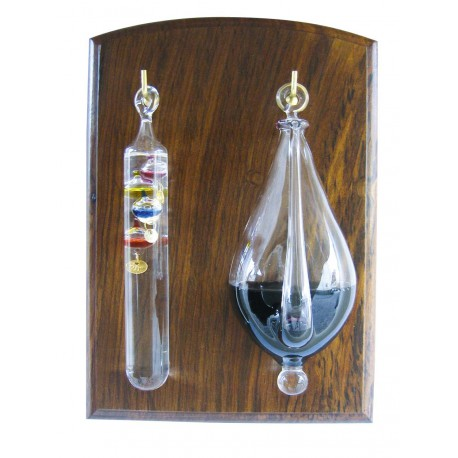 Weather glass with thermometer on sheesham wood base